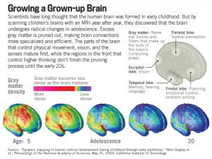 Tobacco Addiction and the Adolescent Brain